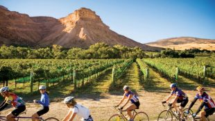 colorodo 310x174 - The Top Cycling Vacations