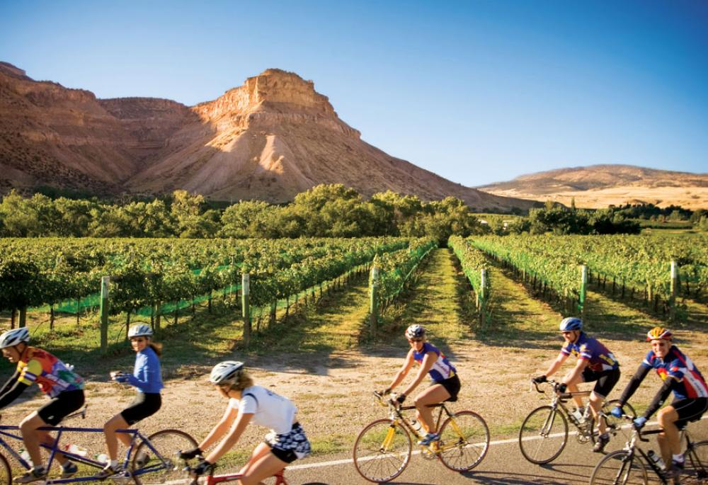 colorodo - The Top Cycling Vacations